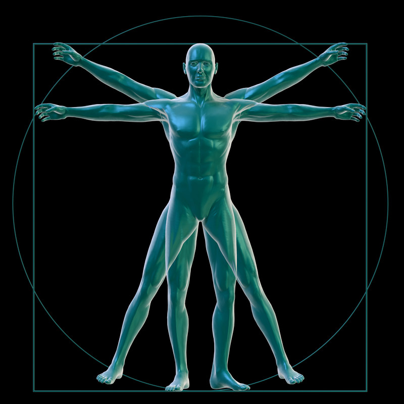 Formation Anatomie physiologie Do-In